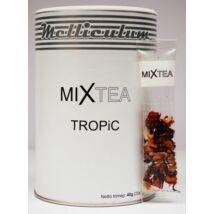 MIXTEA TROPIC (20db)